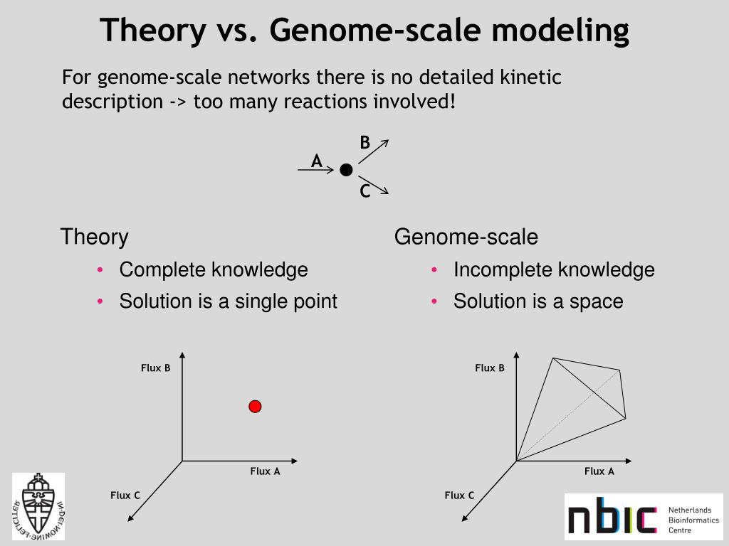 Theory vs. Genome-scale modeling