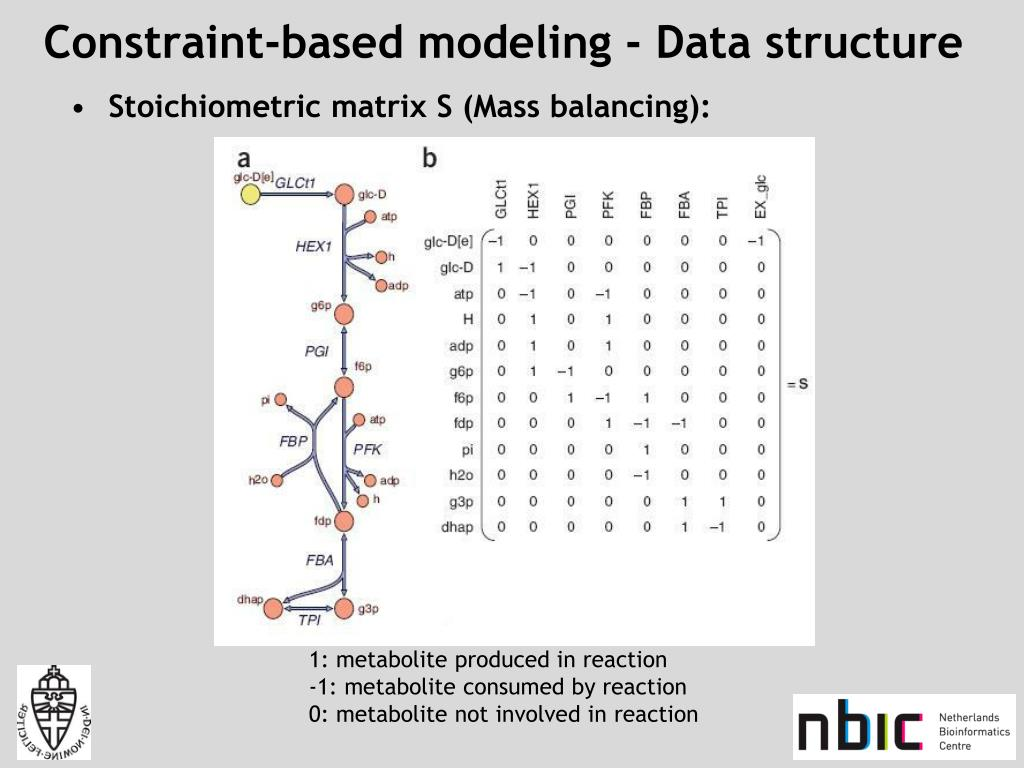 Constraint-based modeling - Data structure