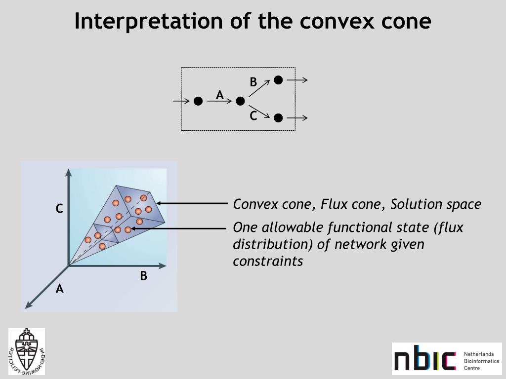Interpretation of the convex cone