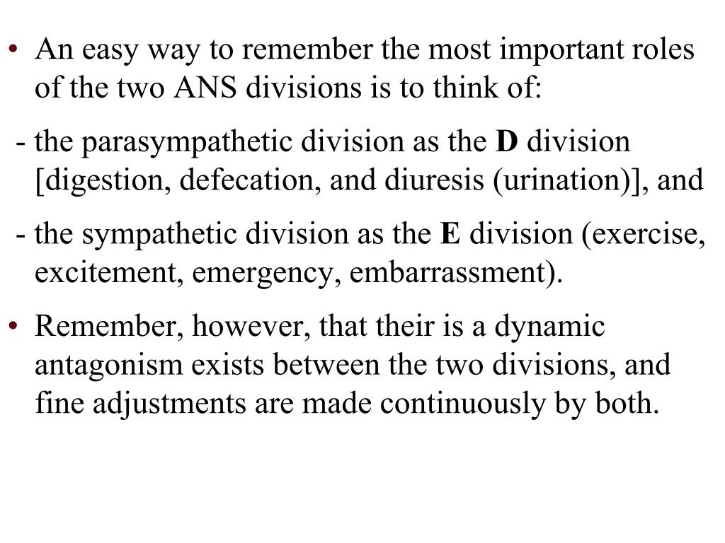 An easy way to remember the most important roles of the two ANS divisions is to think of: