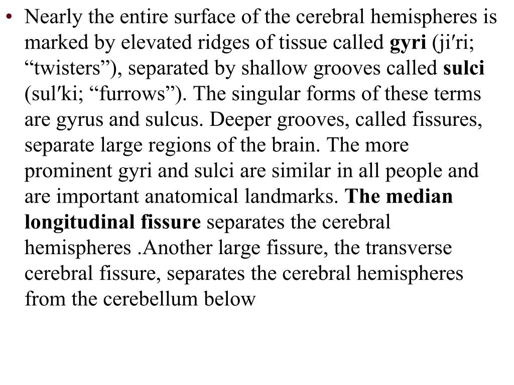 Nearly the entire surface of the cerebral hemispheres is marked by elevated ridges of tissue called