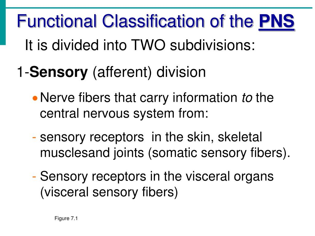 Functional Classification of the