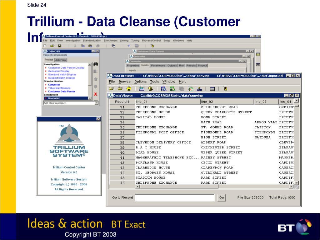 Trillium - Data Cleanse (Customer Information)