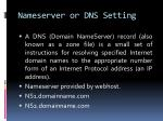 nameserver or dns setting