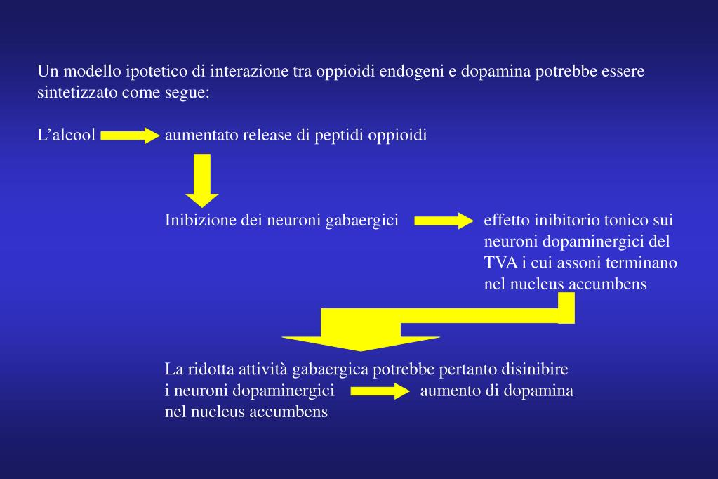 Un modello ipotetico di interazione tra oppioidi endogeni e dopamina potrebbe essere sintetizzato come segue: