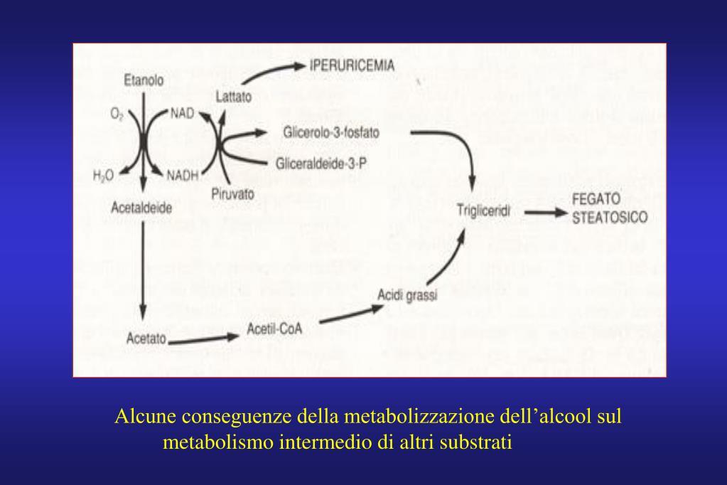 Alcune conseguenze della metabolizzazione dell'alcool sul
