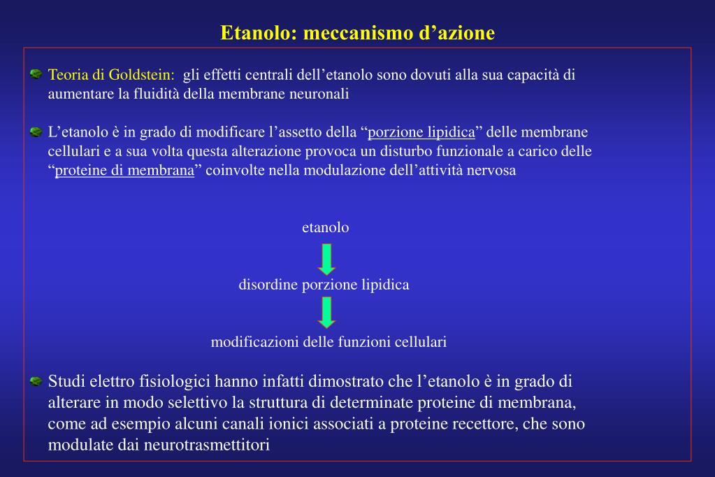 Etanolo: meccanismo d'azione