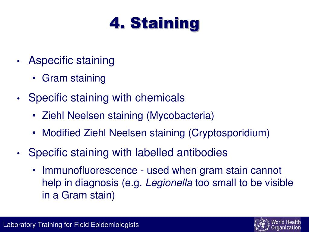 4. Staining