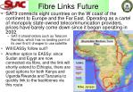fibre links future