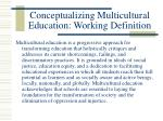 conceptualizing multicultural education working definition