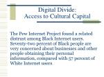 digital divide access to cultural capital19