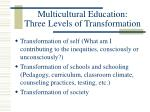 multicultural education three levels of transformation