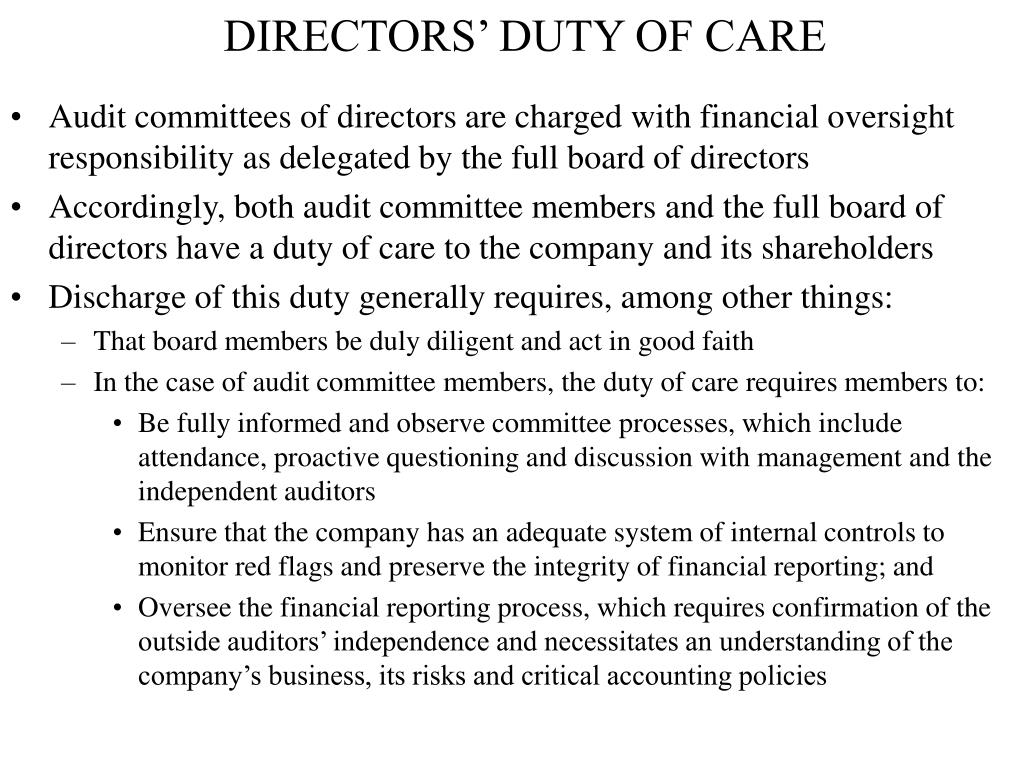 DIRECTORS' DUTY OF CARE