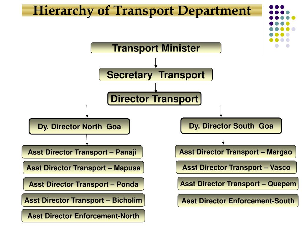 Hierarchy of Transport Department