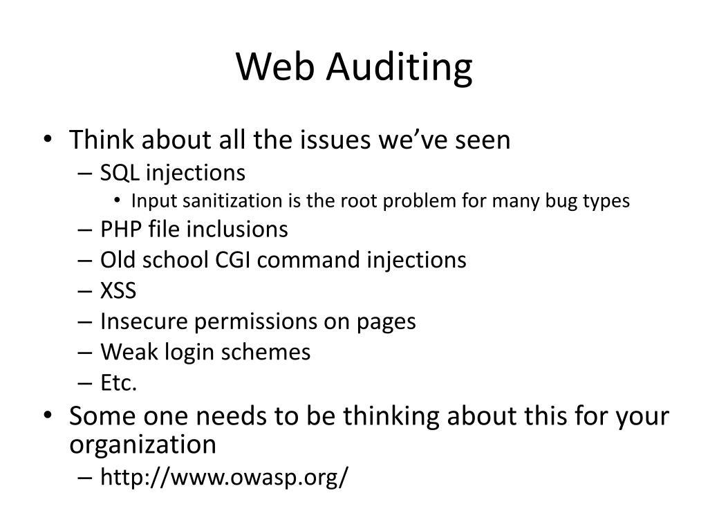 Web Auditing