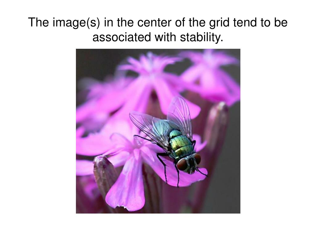 The image(s) in the center of the grid tend to be associated with stability.