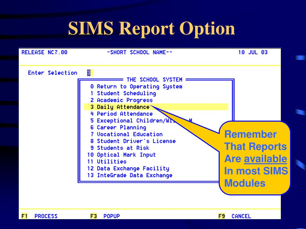 SIMS Report Option