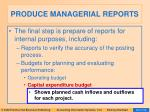 produce managerial reports29