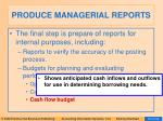 produce managerial reports30