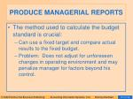 produce managerial reports37