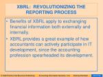 xbrl revolutionizing the reporting process44