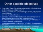 other specific objectives8