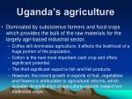 uganda s agriculture