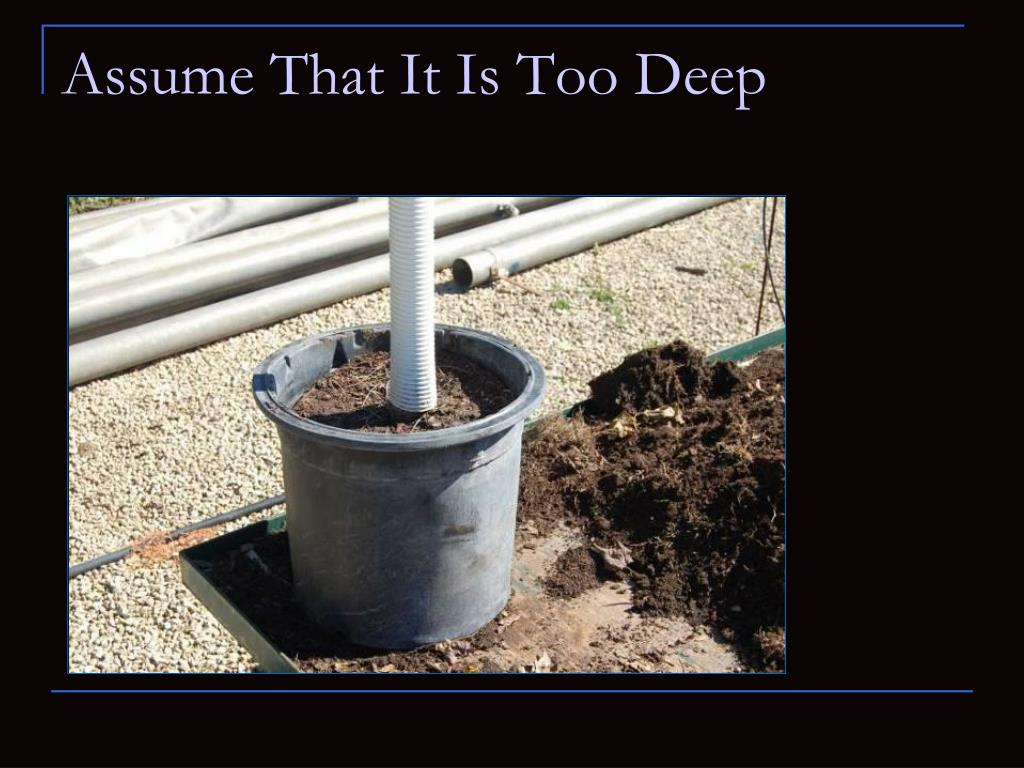 Assume That It Is Too Deep