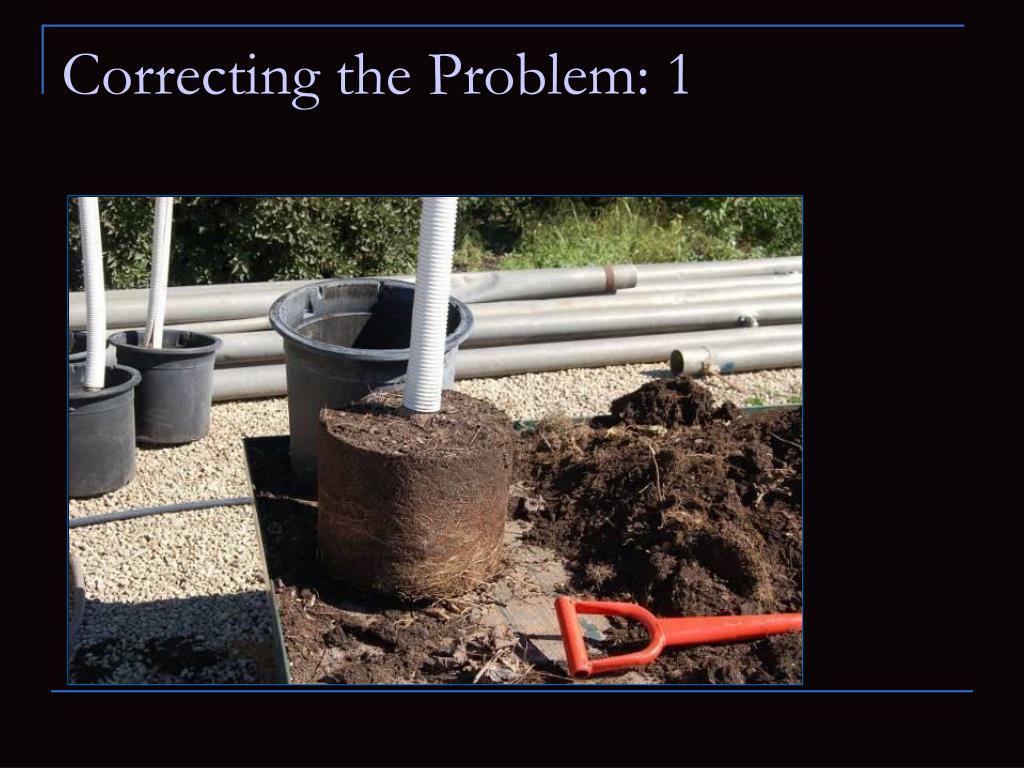 Correcting the Problem: 1