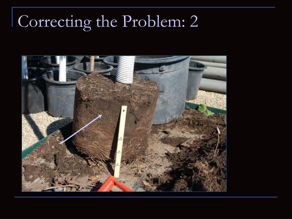 Correcting the Problem: 2