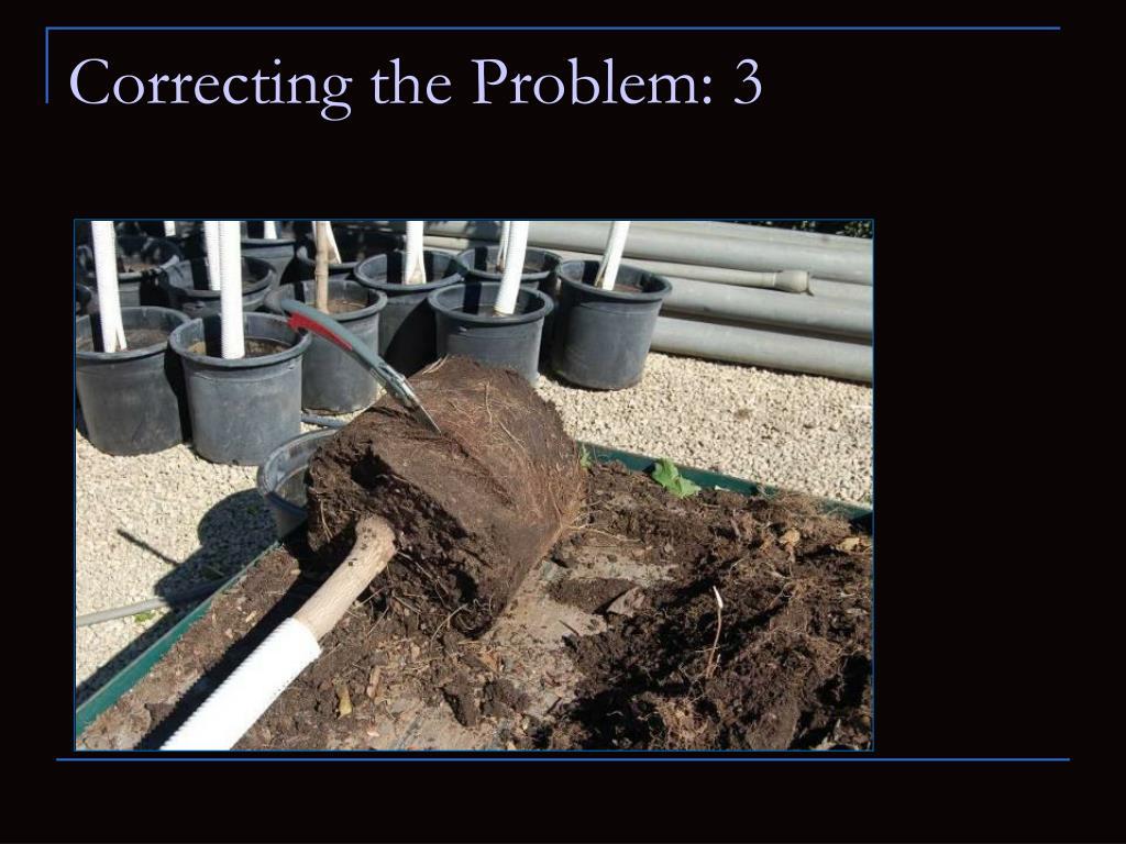 Correcting the Problem: 3