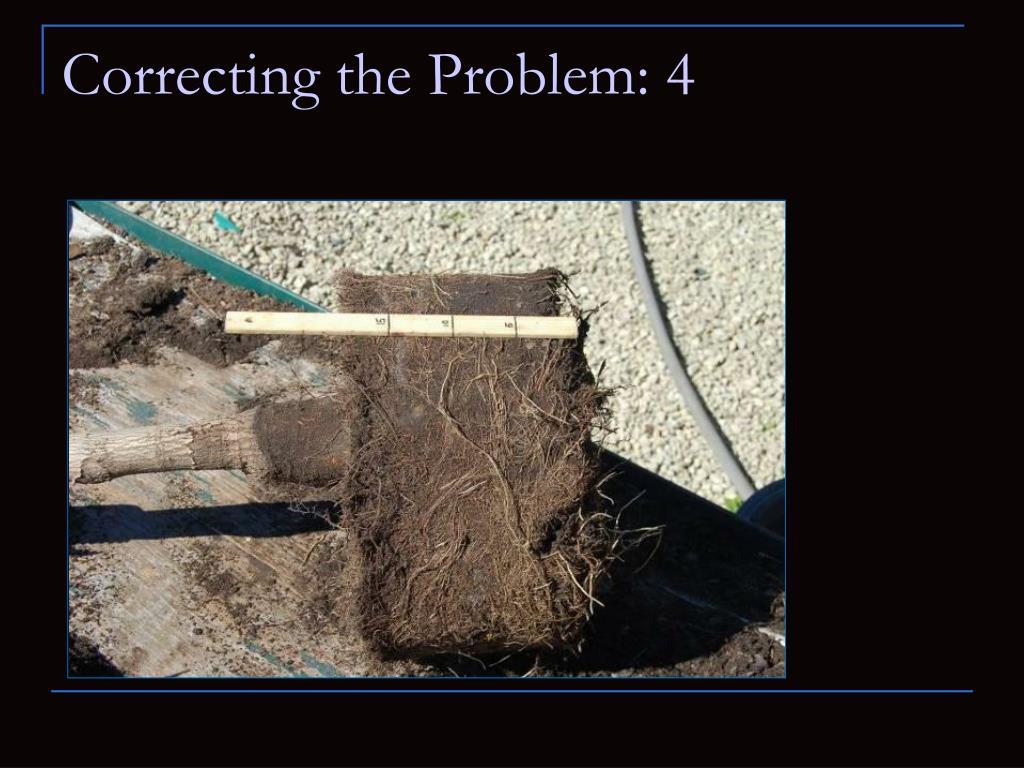 Correcting the Problem: 4
