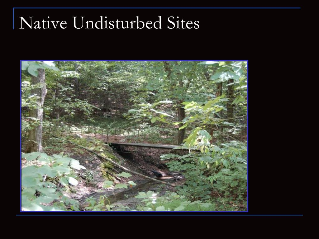 Native Undisturbed Sites