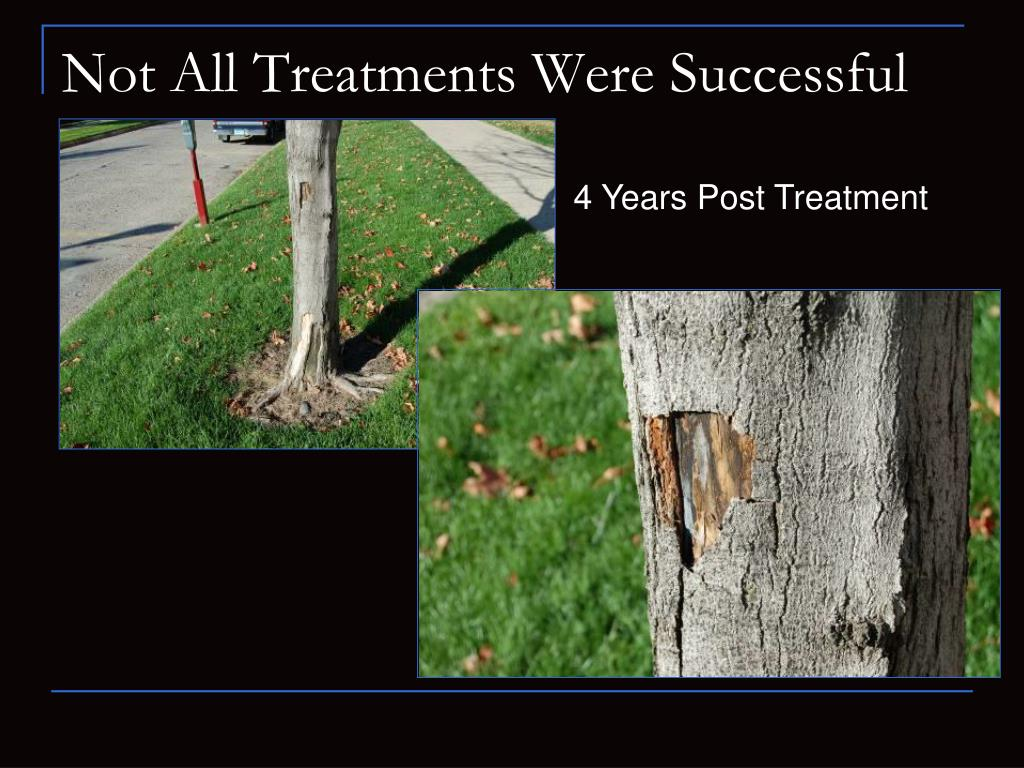 Not All Treatments Were Successful