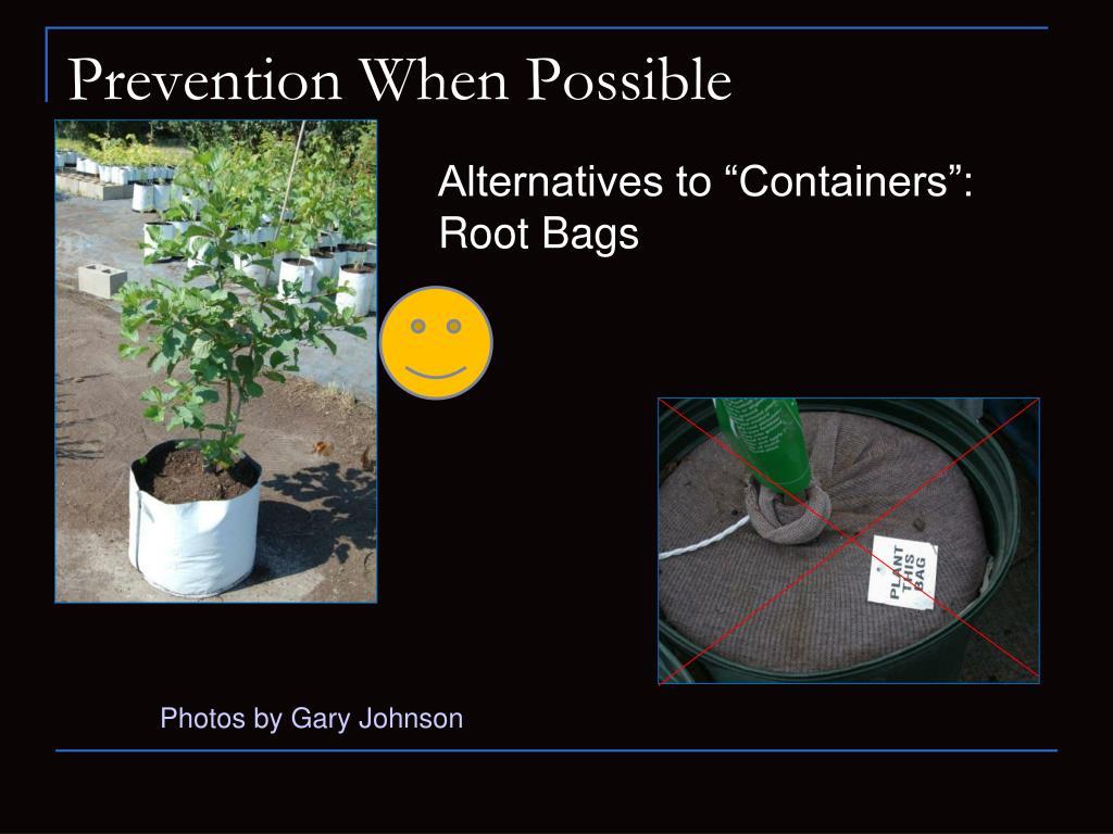 Prevention When Possible