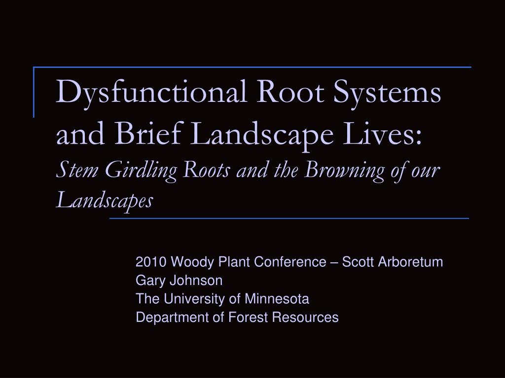 Dysfunctional Root Systems and Brief Landscape Lives: