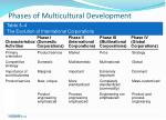 phases of multicultural development