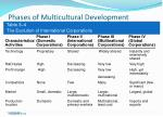 phases of multicultural development23
