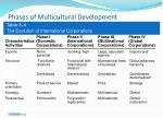 phases of multicultural development24