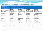 phases of multicultural development25