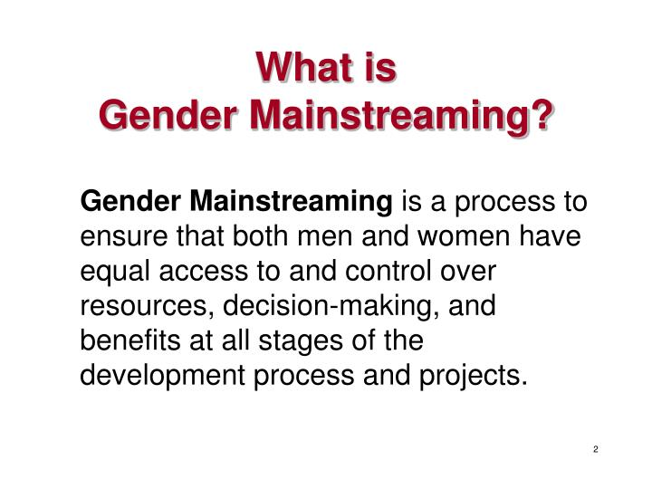 What is gender mainstreaming