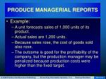 produce managerial reports38