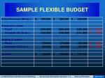 sample flexible budget