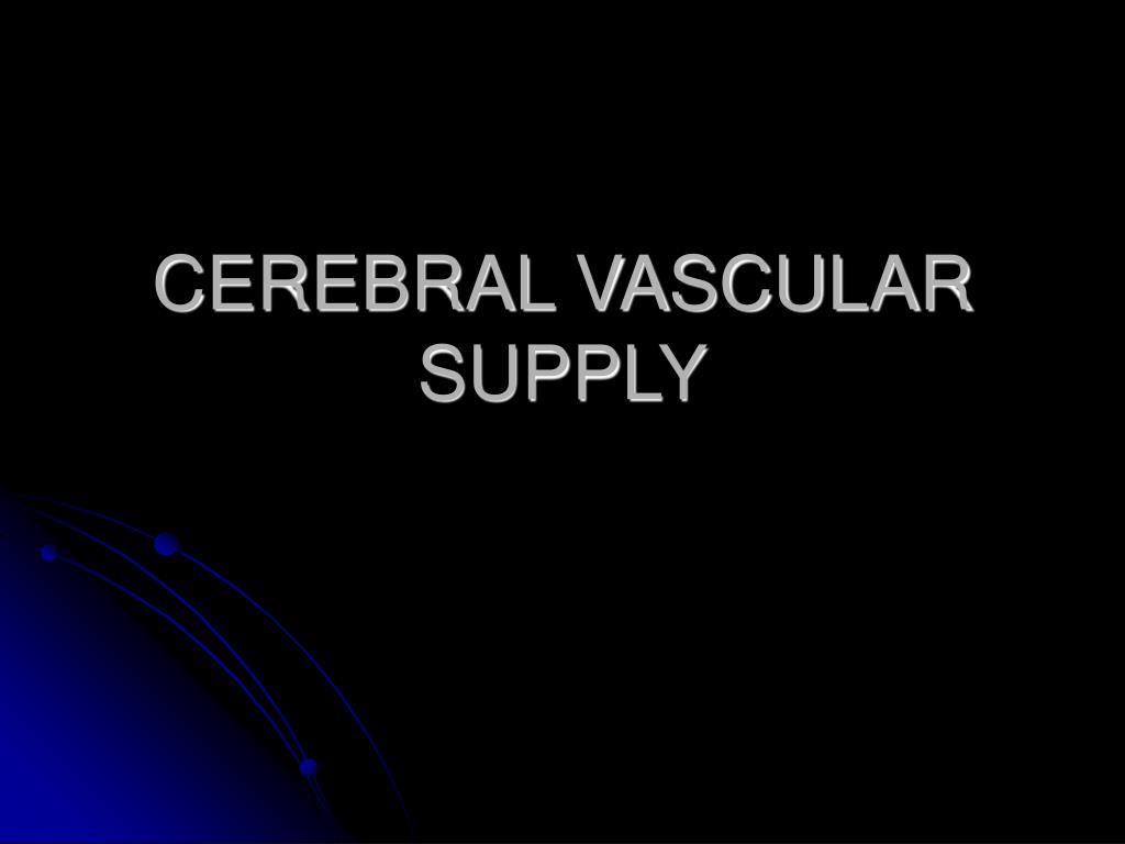 CEREBRAL VASCULAR SUPPLY