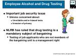 employee alcohol and drug testing