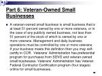 part 6 veteran owned small businesses