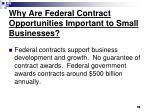 why are federal contract opportunities important to small businesses