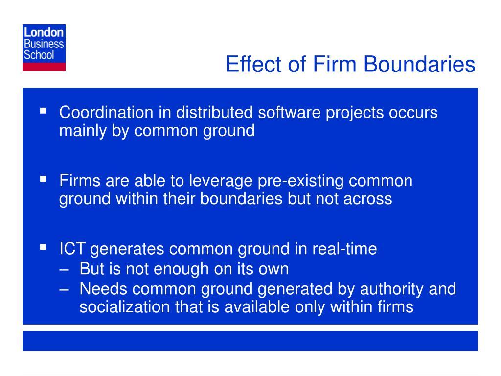 Effect of Firm Boundaries