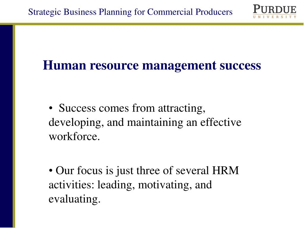 Human resource management success