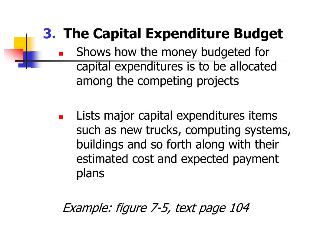 The Capital Expenditure Budget